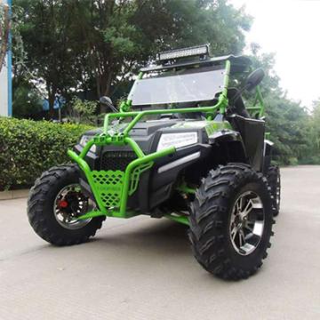 沙灘車 250cc1